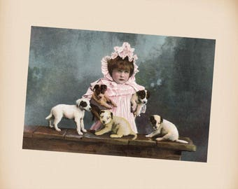 Girl With Puppies New 4x6 Vintage Postcard Image Photo Print CE162