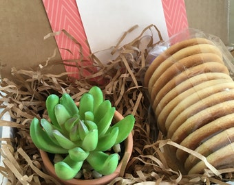 Cookie Succulent Gift Box, Thinking of You Gifts, Get Well Soon, Sugar Cookies, Birthday Presents, Faux Succulent, Bridesmaid Gift