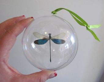 Real Green Dragonfly Damselfly Christmas Ornament Ball Globe Round Gift Neurobasis chinensis