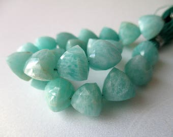 Amazonite faceted trillion briolette