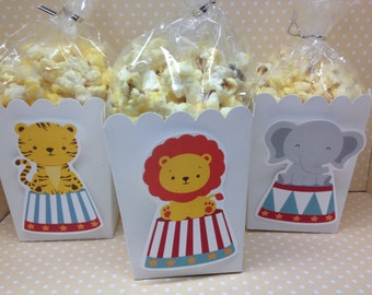 Circus or Carnival Party Popcorn or Favor Boxes -set of 10