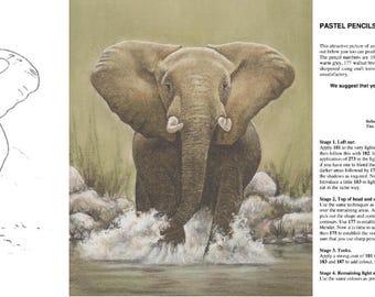 Elephant Workshop Pack