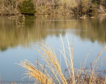 Lake Dardenelle