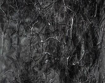 Worm Shadows (Print)