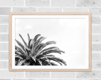black and white beach photography palm tree print palm tree art tropical decor nautical beach print tropical wall art photography decor
