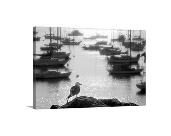 Monterey Bay Art, Sailboat Marina Picture, Sailing Art, Black and White Monterey California Ocean Photograph, Monterey Gift, Yacht Harbors