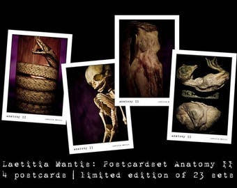 "Postcardset ""Anatomy II"" - Limited edition postcard set of 4."