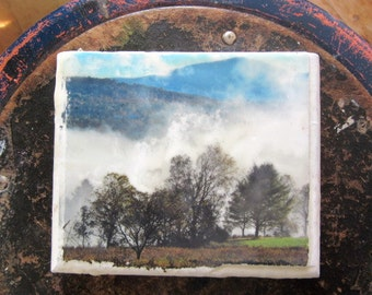 Ethereal Trees and Fog - Encaustic  Image Transfer Painting -  Original Photo - Recycled Wood - Landscape - Mixed Media -
