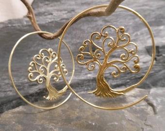 Brass earrings, spiral earrings, tree of life