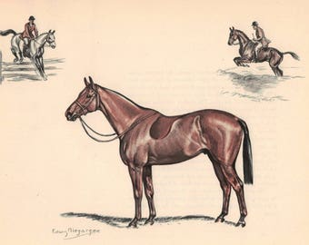 Brown Hunting Horse With Rider Color Print by Edwin Megargee - Book Plate - Hunting Horses Vintage Wall Hanging