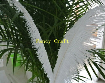white ostrich feather 50 pcs for wedding party centerpiece decor craft supply