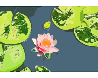 Waterlily 3 - nature photography
