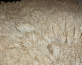 "Bond/Rambouillet Shetland/Border Leicester Cross ""Cooper"" Raw Wool"
