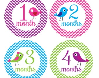 Baby Monthly Stickers - Chevron Monthly Stickers, Girl Monthly Baby Stickers