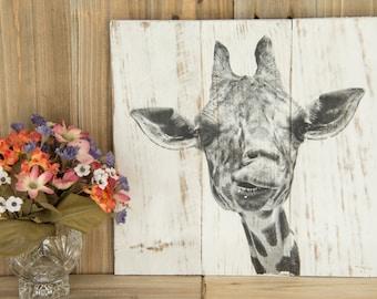 Goofy Giraffe face photo transferred onto reclaimed wood - 0029