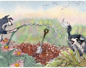 Border Collie dog 8x10 art print - gardening is fun playing with the garden hose affinity with water from Susan Alison painting