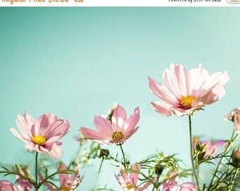 ON SALE flower photography pink cosmos 8x10 20x30 fine art photography floral photography summer decor bedroom pastel wall art mint aqua bot