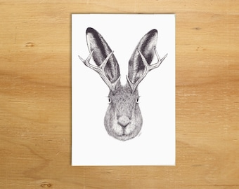 Jackalope illustration A6 greeting card