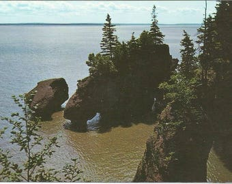 Vintage 1950s Postcard Hopewell Rocks Bay of Fundy New Brunswick NB Canada Oceanic Geology Atlantic Maritimes Photochrome Postally Unused