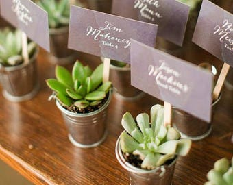 Succulent Favors | 24 DIY Favors  | Succulent Planters | Mini galvanized buckets |  Wedding Favors | This listing is BUCKETS ONLY