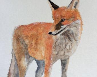 Framed Fox Original Watercolor Painting