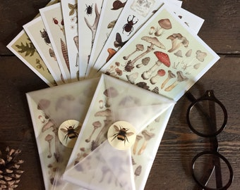 Natural History Postcards pack of 8