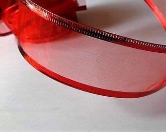 Organza ribbon with metal effect border