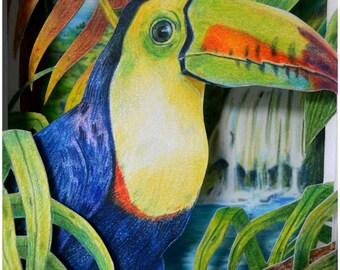 Toucan Tunnel Book, Original Art, Tunnel Book, Shadow Box, Drawn Shadow Box, Toucan Drawing, Original Colored Pencil Drawing