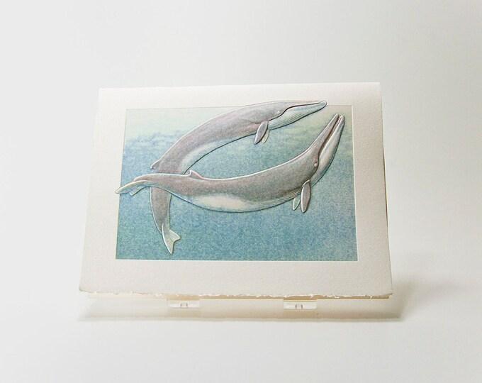 Fin Whales Note Card. Love. Anniversary. Letterpress. Embossed. Single Card. Blank inside.