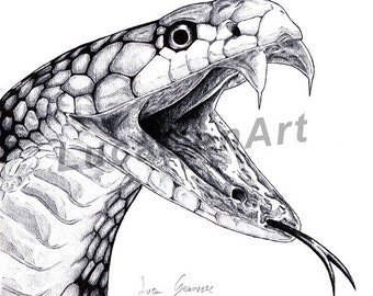 Cobra Snake handmade Drawing, Digital Print, Art Print, Made in pencil, charcoal and ink, Realistic Drawing