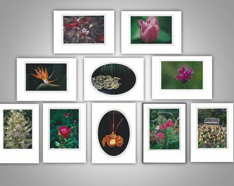 Floral Note Cards (pack of 10)