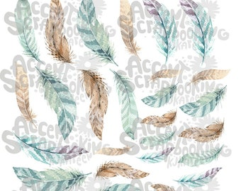 Turquoise feathers / Brown cutting