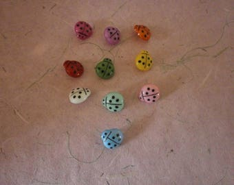 x 10 mixed buttons sewing Ladybug acrylic 16 x 15 mm