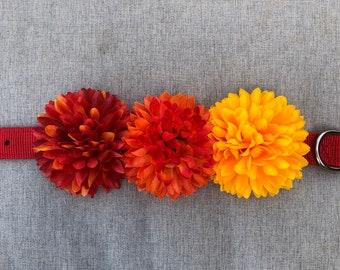 Summer Sunset Dog Flower Collar