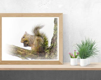 Hear & Soul of a Eastern Grey Squirrel Fine Art Print