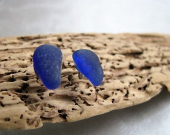 Blue Sea Glass -Cobalt Blue Posts - Eco Friendly - Sea Glass - Beach Glass Earrings - Stud Earrings - Prince Edward Island Mermaid Tears