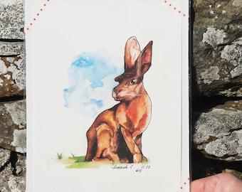 A5 Scottish Hare Print