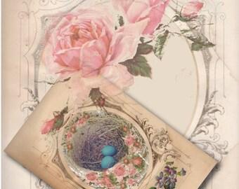Robin Egg Easter Card Printable ~ Victorian Framed Bird's Nest Pink Rose 4X6 Inch Folding Greeting Card Vintage Aged Paper Happy Easter