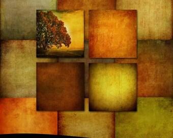 Fine Art Photoshop Textures: Shades of Autumn