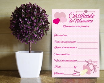 Birth certificate designed for the baby girl (spanish)