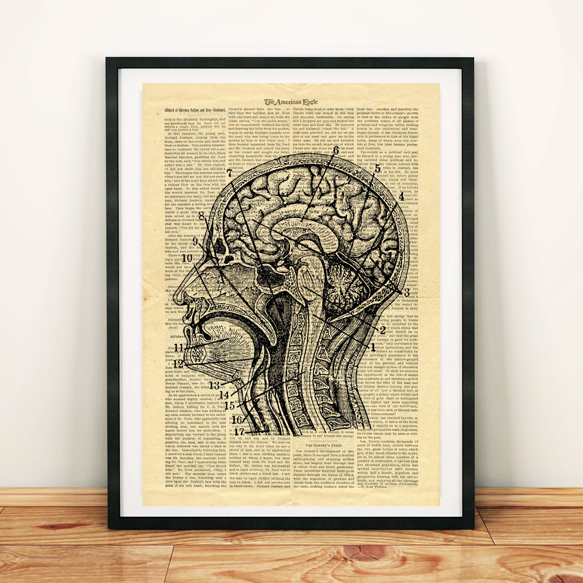 Human Head Brain Anatomy Science Vintage Printable Collage Old