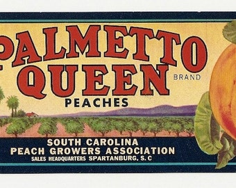 5 Old Vintage Fruit CRATE Labels Tavares,PALMETTO QUEEN Spartanburg,Yakima,etc..