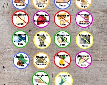 Printable Allergy Sticker, Printable Allergy, Allergy Alert, Medical Alert, Allergy Printable, Allergic Reaction, Allergy Identification
