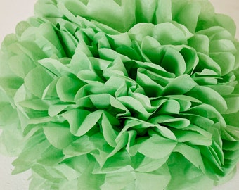 Apple Green Paper Pom Pom