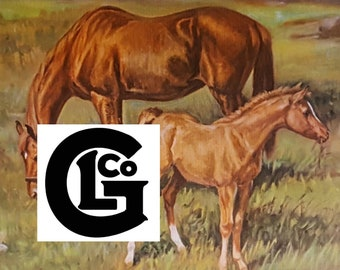 """GP15448w """"Looking For A Friend""""by Ole Larson"""