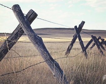 The Crossing, barbed wire fence, jack fence, tumbleweed, rustic photo, ranch photo, fine art print, wall art, photo, photograph