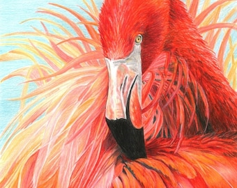 Bird Art RED FLAMINGO print by Carla Kurt Signed 16 x 20 wwao ebsq