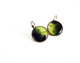 Round green resin earrings / Seaweed jewelry / Botanical jewelry / Mermaid jewelry / Photo jewelry / Gift for her / FREE SHIPPING