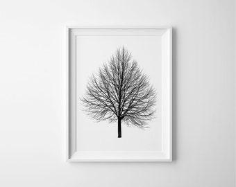 Tree Print, Nature Print, Tree Art, Black and White Art, Tree Decor, Tree Wall Art, Scandinavian Print, Tree Silhouette, Printable Wall Art