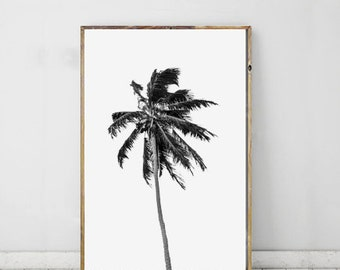 Palm Tree Printable Art, Black and White Photography, Tropical Print